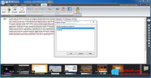 Ekran görüntüsü Snagit Windows 8