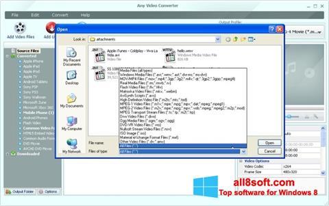 Ekran görüntüsü Any Video Converter Windows 8