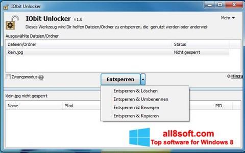Ekran görüntüsü IObit Unlocker Windows 8