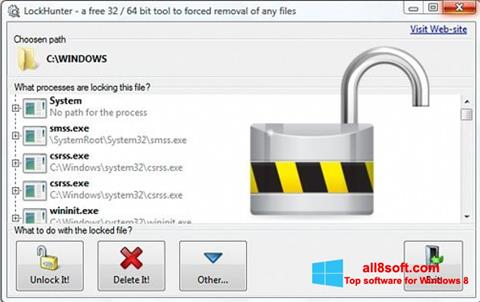 Ekran görüntüsü LockHunter Windows 8