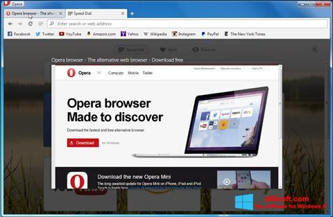 Ekran görüntüsü Opera Developer Windows 8