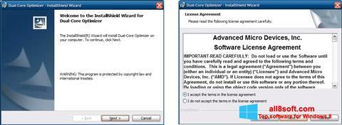 Ekran görüntüsü AMD Dual Core Optimizer Windows 8