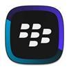 BlackBerry Link