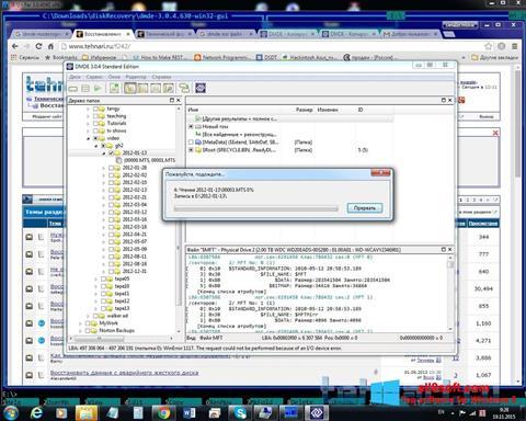 Ekran görüntüsü DMDE Windows 8