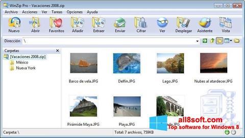 Ekran görüntüsü WinZip Windows 8